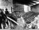 Anchorage Agricultural and Industrial Fair, Sept. 3, 4 and 5, [19]17.