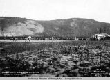 Baseball game at Nenana, Alaska, July 30th, 1916, Nenana vs. Fairbanks, Fairbanks at bat.