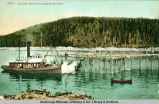 Salmon traps in Alaskan waters.