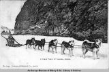 A crack team of huskies, Alaska.