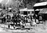 California pack train on streets of Skagway, 1898.