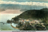 Bird's-eye view Cordova, Alaska.