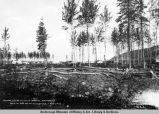 Nenana, Alaska, showing hospital, main office. Dock and pile driver in distance. Aug. 1, 1916.