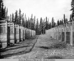 Dog kennels built by CCC. Mt. McKinley, Alaska.