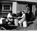 Elizabeth Sarren, cook, and Anthony Roberts cutting reindeer for roundup mess. Egavik, Alaska