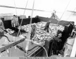 Unloading red salmon catch at cannery. Naknek. 1954.