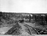 Station work at mile 269. A[laska] N[orthern] R[ail]road. May 22 - 1920.