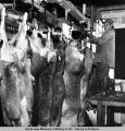 Reindeer carcasses in the skinning room.