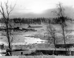 Looking south from Gov[ernmen]t Hill, Anchorage, Alaska. Dec. 21-1917. 12: A.M.