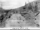 Bridge no. 41 1/2, mile 21 1/2. A[laska] N[orthern] R[ailwa]y.