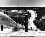 Trans Alaska Oil Pipeline in process of construction ; cold cuts means efficiency by 50 to 60 per...