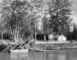 Fish Wheel & Camp on the Tanana River below Fbx [Fairbanks].