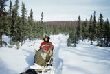Vi Redington and Keith Redington and pup on Iditarod Trail.