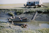 Commercial fishing, Dutch Wale's camp.