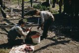 Joe Redington Jr. and Raymie Redington cutting seal meat for dogs at Flathorn Lake.