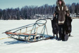 Joe Redington Jr. holding up trapped beavers beside dog sled.