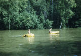 Tim Redington and Joe Redington Jr. swimming at the Redington Flathorn homestead.