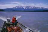 Vi Redington hauling a load of seals for dog food, Mt. Susitna in background.