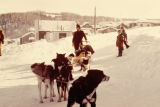 Raymie Redington in Ruby in 1973 Iditarod Trail Sled Dog Race with lead dog Freckles.