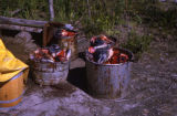 Buckets of salmon heads to feed the sled dogs.