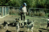 Joe Redington, Sr., in the dog yard.