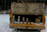 Trophies for Aurora Dog Mushing races.
