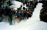 Dog team at the start of the Iditarod Trail Sled Dog Race on the trail between Anchorage and Eagle...