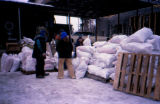 People preparing to send 'drop bags' out for Joe Redington Sr.'s Iditarod Challenge.