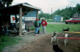 Spectators watching sled dogs run on Joe Redington Sr.'s exercise wheel.