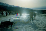 Musher arriving in Eagle River on the Iditarod Trail Sled Dog Race.