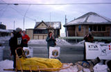 Musher arriving in Nome on the Iditarod Trail Sled Dog Race.