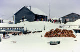 Dog team arrives in village along the Iditarod Trail Sled Dog Race with school children watching...
