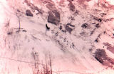 Aerial view of dog team on the Iditarod Trail.