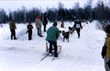Joe Redington Jr. walks by his dog team to his sled on Campbell Airstrip during a sprint race at...