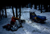 Joe Redington Sr.'s camp on the Iditarod Trail Sled Dog Race.