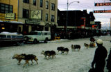 Dog team mushing down Fourth Avenue during the Fur Rendezvous dog races.