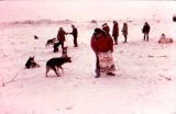 Dick Tozier carries a bag of Purina dog food to feed sled dogs in the dog lot in Nome.