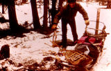 Musher Ken Chase beside his dog sled in Rohn during the 1973 Iditarod Trail Sled Dog Race.