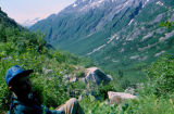 Joe Redington Sr. sitting on a green mountain side looking out over a valley on the Chilkoot Trail.
