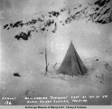 "Mail carrier ""Spencers"" tent at top of 4th bench, Valdez Glacier, Feb. 9, [18]99."