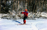 Man cross-country skiing.