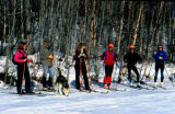 Six cross-country skiers pose with one dog.