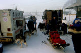 Two dog sleds set up for departure on the 1995 Commemorative Serum Relay Race in Nenana.