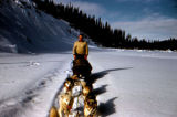 Man stands on sled runners of dog team.