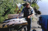 Man from Fish & Game measuring a king salmon.