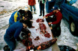 People working at a table outside, cutting beaver meat to use on Iditarod Trail Sled Dog Race.