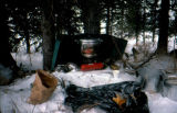 Joe Redington Sr.'s camp stove under tree in snow in Rohn during the Iditarod Trail Sled Dog Race.