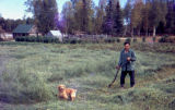 Joe Delia cutting grass in field with small golden haired dog in Skwentna.