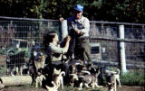Susan Butcher and Joe Redington Sr. with sled dog puppies in Knik.