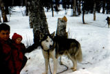 Person with infant and sled dog.